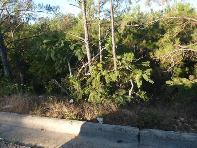 0 16th Ave S, PHENIX CITY, AL 36869 (MLS #70987) :: Bickerstaff Parham
