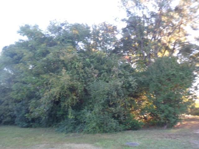 0 8th Ave, PHENIX CITY, AL 36869 (MLS #70994) :: Bickerstaff Parham