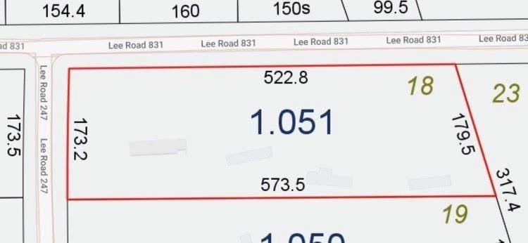 831 Lee Road 247 - Photo 1
