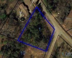 0 Pine Ridge Trail, PHENIX CITY, AL 36869 (MLS #81700) :: Kim Mixon Real Estate