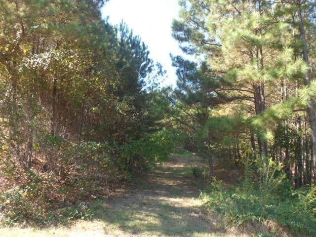 0 Lee Rd 556, PHENIX CITY, AL 36867 (MLS #82046) :: Kim Mixon Real Estate