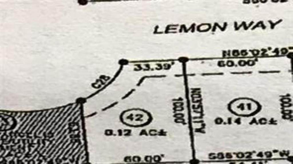 19 Lemon Way - Photo 1