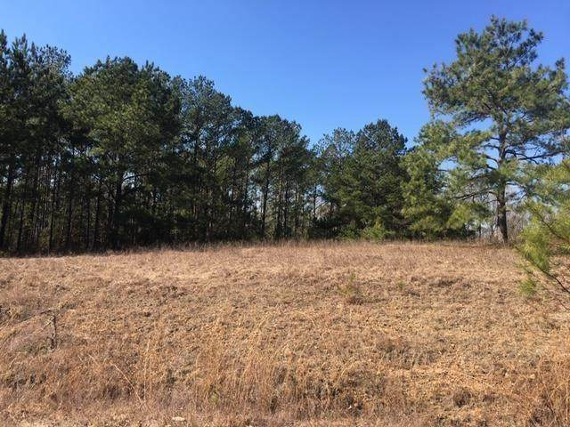1 Ihagee Creek Circle, FORT MITCHELL, AL 36856 (MLS #82355) :: Kim Mixon Real Estate