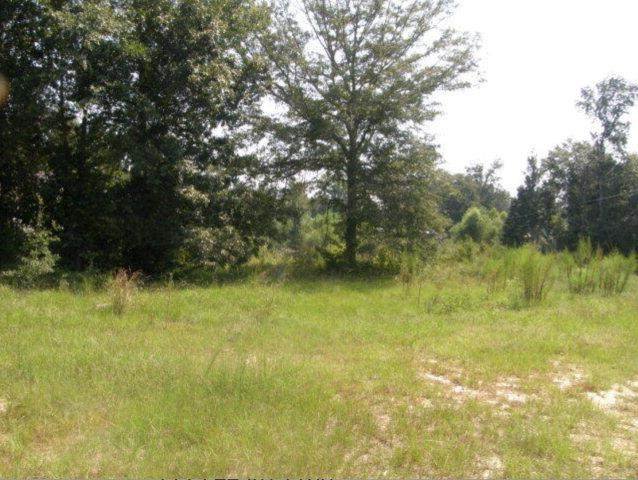 172 Lee Rd 2166, SALEM, AL 36874 (MLS #61881) :: Haley Adams Team
