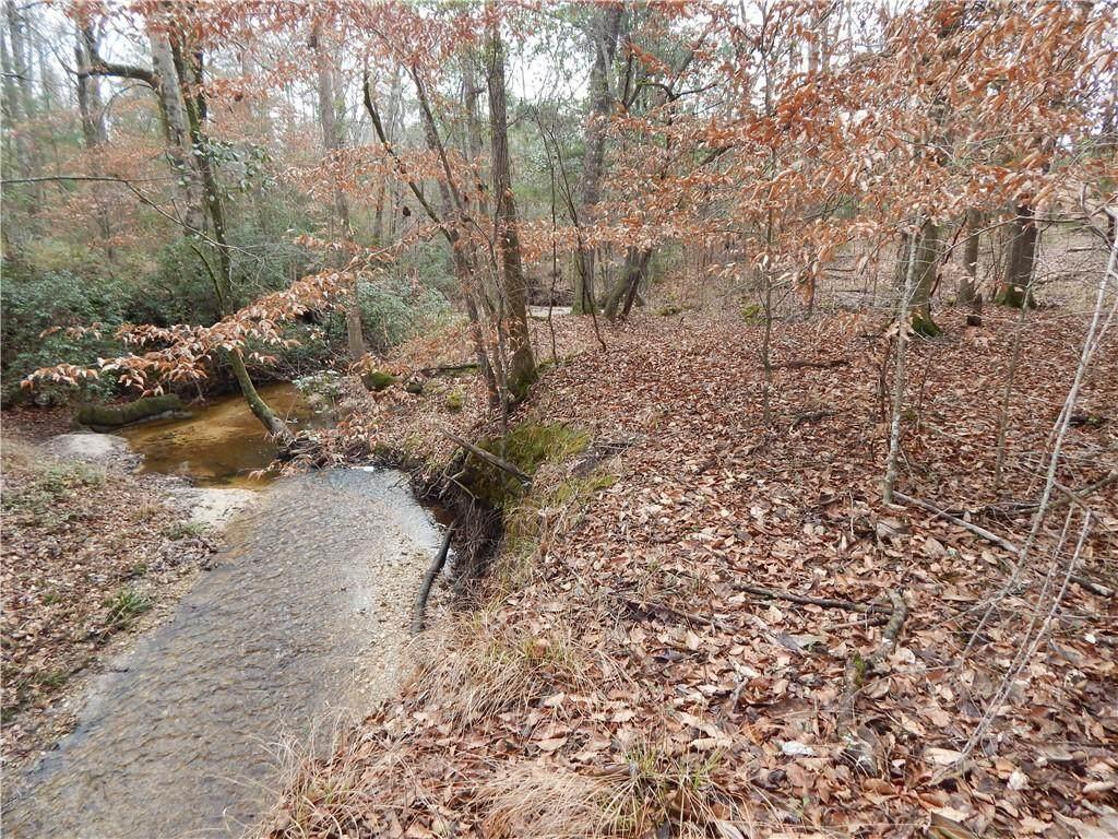 6 Ihagee Creek Circle - Photo 1