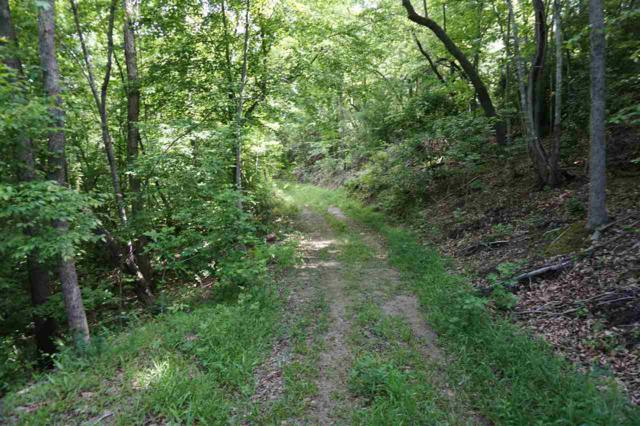 134 AC Possum Trot, Blacksburg, SC 29702 (#1107620) :: Rinehart Realty
