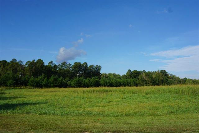 51 AC Highway 5, Blacksburg, SC 29702 (#1108484) :: Rinehart Realty