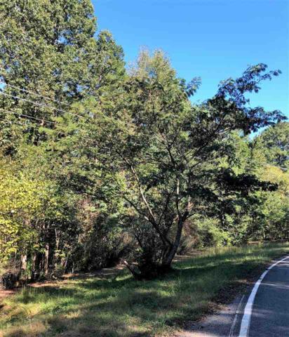 000 Blue Herron Way, Belmont, NC 28012 (#1108512) :: Rinehart Realty