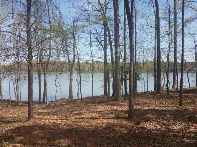 301 Cape August Place, Belmont, NC 28012 (#1108785) :: Rinehart Realty