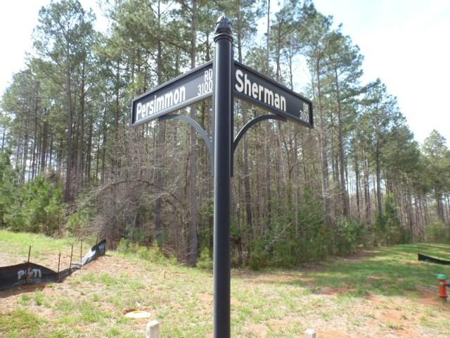 3141 Sherman Drive, Lancaster, SC 29720 (#1107138) :: Rinehart Realty