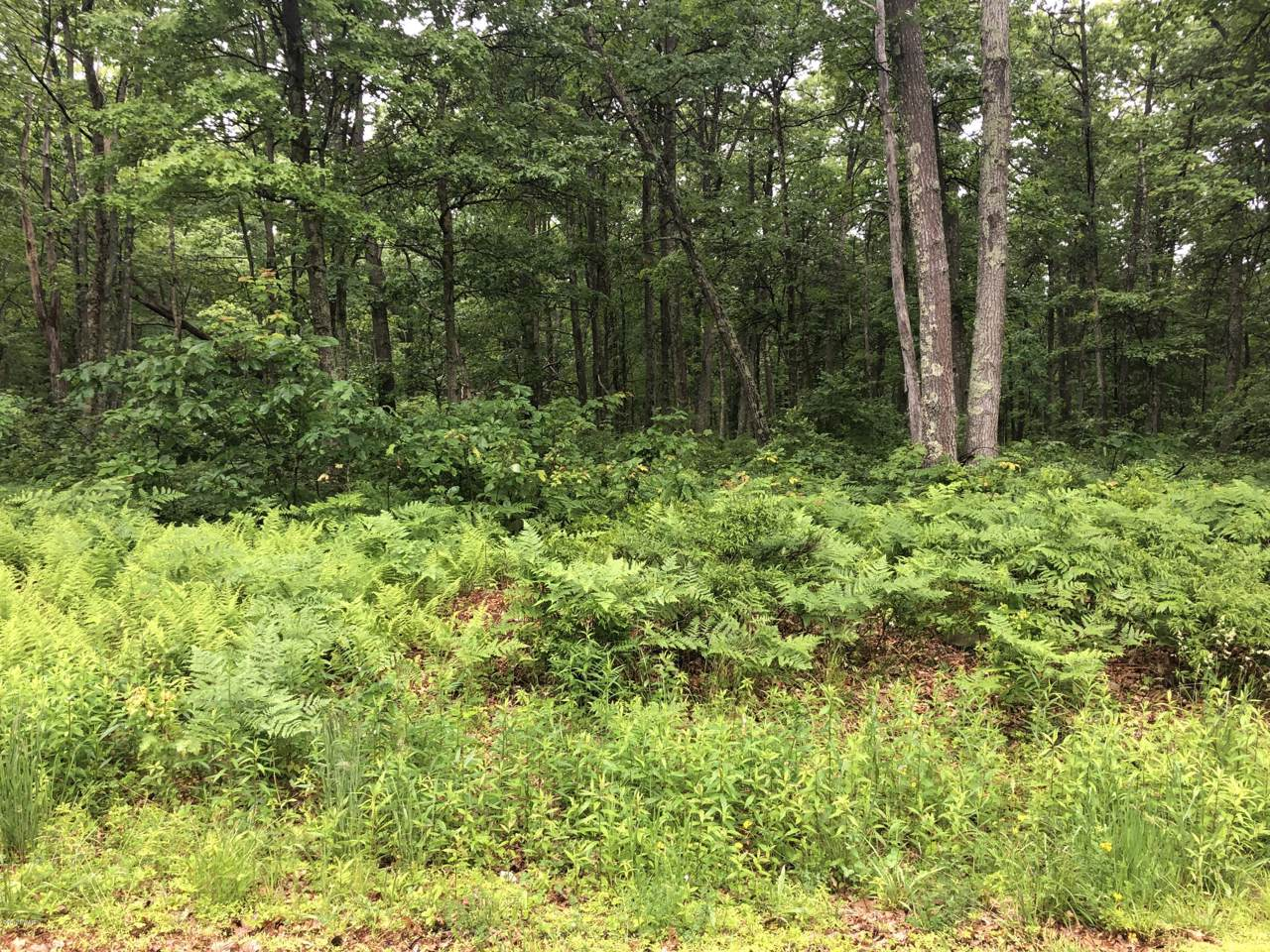 Lot 135 Wedgewood Dr - Photo 1
