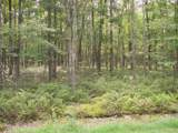LOT 99 Lower Lakeview Dr - Photo 2