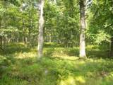 LOT 99 Lower Lakeview Dr - Photo 5