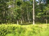 LOT 226 Cottonwood Dr - Photo 1