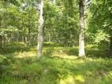 LOT 42 Fawn Lake Dr - Photo 5