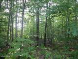 Lot 71 Old Woods Rd - Photo 5