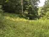 Equinunk Creek Rd - Photo 1