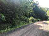 Equinunk Creek Rd - Photo 8