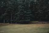 119 Deer Run Rd - Photo 8