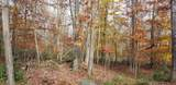 Lot 42 Perry Pond Rd - Photo 2