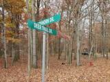 186 Deer Trail Dr - Photo 1