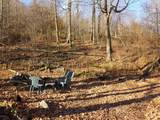 57 Acres Sterling Rd - Photo 1