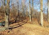 57 Acres Sterling Rd - Photo 10