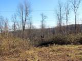 57 Acres Sterling Rd - Photo 11