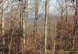 57 Acres Sterling Rd - Photo 15