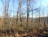 57 Acres Sterling Rd - Photo 8