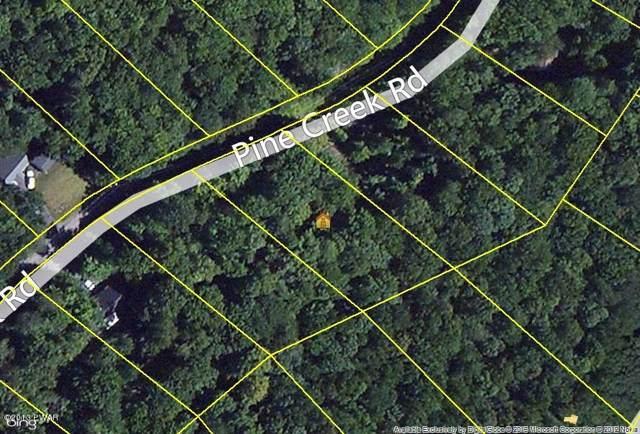810 Pine Creek Rd, Lakeville, PA 18438 (MLS #13-585) :: McAteer & Will Estates | Keller Williams Real Estate