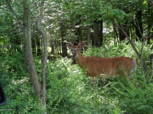 1303 Lakeside Dr, Greentown, PA 18426 (MLS #15-4328) :: McAteer & Will Estates | Keller Williams Real Estate