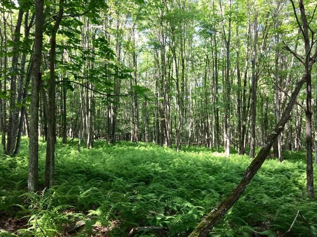 46 Deer Run Rd, Hawley, PA 18428 (MLS #17-1474) :: McAteer & Will Estates | Keller Williams Real Estate