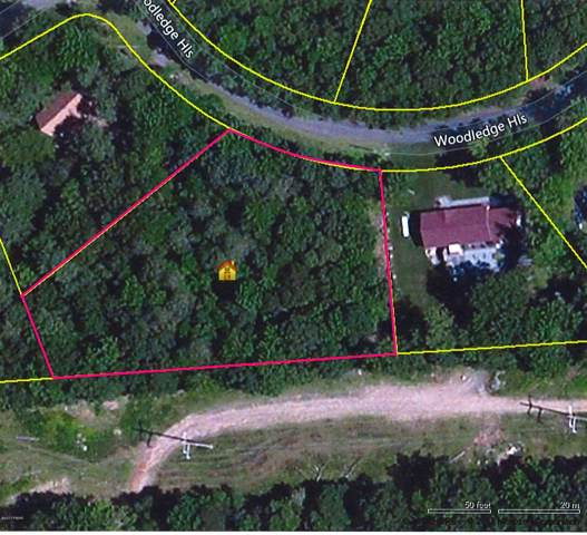 10 Woodledge Hills Dr, Hawley, PA 18428 (MLS #17-2927) :: McAteer & Will Estates | Keller Williams Real Estate