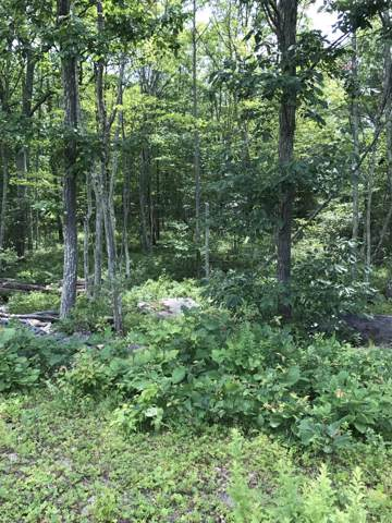 Lot #10 Blue Heron Way, Hawley, PA 18428 (MLS #17-3343) :: McAteer & Will Estates | Keller Williams Real Estate