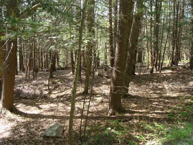 Lot 4 & 5 Deep Hollow Dr, Greentown, PA 18426 (MLS #17-3693) :: McAteer & Will Estates   Keller Williams Real Estate