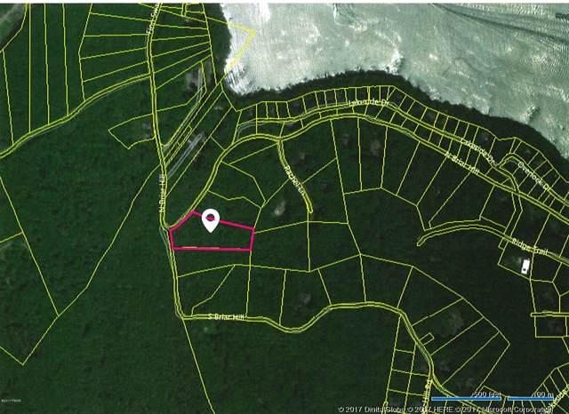3 N Briar Hill, Lakeville, PA 18438 (MLS #17-4157) :: McAteer & Will Estates   Keller Williams Real Estate