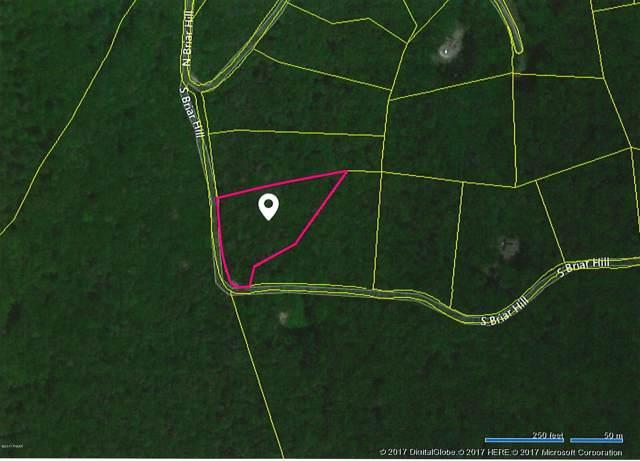 5 S Briar Hill, Lakeville, PA 18438 (MLS #17-4516) :: McAteer & Will Estates   Keller Williams Real Estate