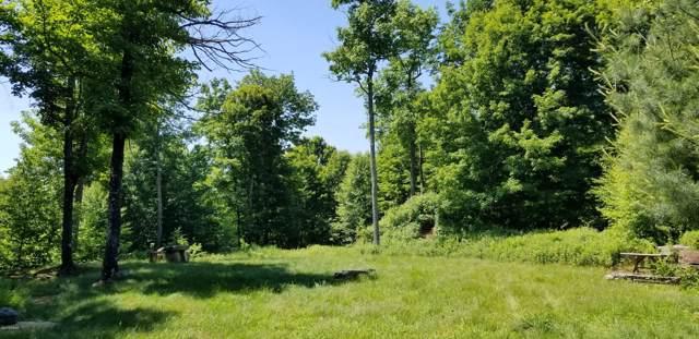 Lot 63 Old Woods Rd, Equinunk, PA 18417 (MLS #18-2755) :: McAteer & Will Estates | Keller Williams Real Estate