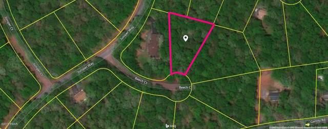 111 Beech Ct, Hawley, PA 18428 (MLS #18-3179) :: McAteer & Will Estates | Keller Williams Real Estate