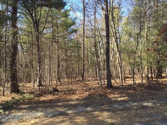 115 Maple Nut Rd, Hawley, PA 18428 (MLS #18-3755) :: McAteer & Will Estates | Keller Williams Real Estate