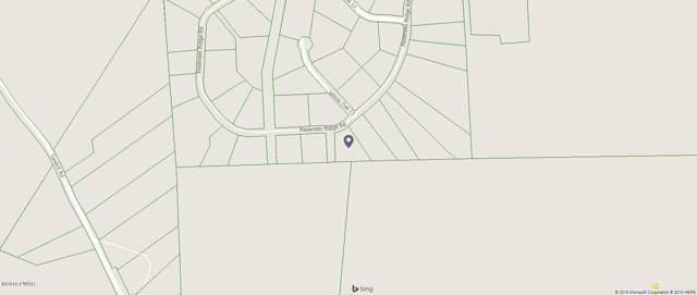 lot 20 Pedersen Ridge Rd, Milford, PA 18337 (MLS #18-3835) :: McAteer & Will Estates | Keller Williams Real Estate