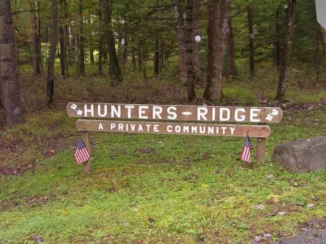 10 Deer Hollow Rd, Lackawaxen, PA 18435 (MLS #18-4260) :: McAteer & Will Estates   Keller Williams Real Estate