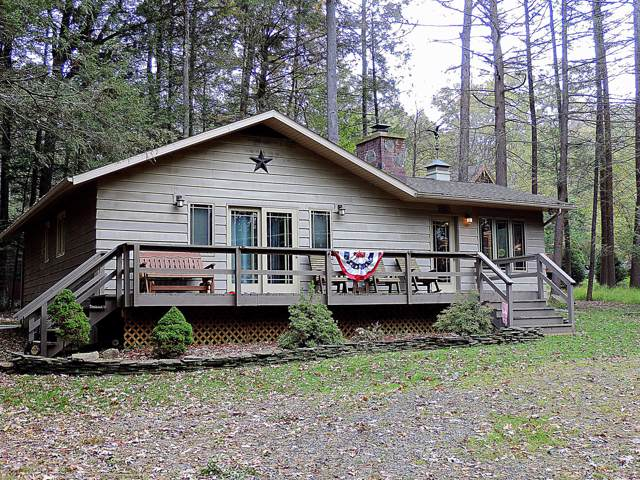 5 Beaver Ct, Lakeville, PA 18438 (MLS #18-4735) :: McAteer & Will Estates   Keller Williams Real Estate