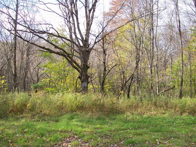 Lot #3 Bunting Rd, Honesdale, PA 18431 (MLS #18-4855) :: McAteer & Will Estates | Keller Williams Real Estate