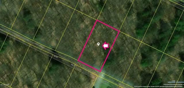 Elk Dr, Newfoundland, PA 18445 (MLS #18-5131) :: McAteer & Will Estates | Keller Williams Real Estate