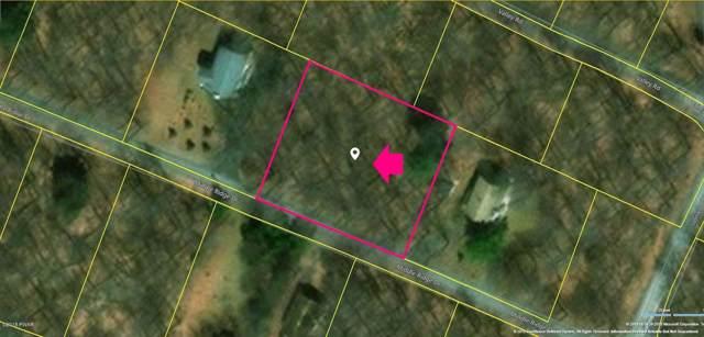 Middle Ridge Dr, Newfoundland, PA 18445 (MLS #18-5132) :: McAteer & Will Estates | Keller Williams Real Estate