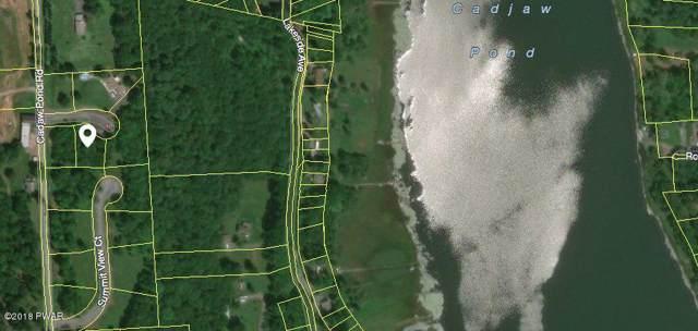 108 Cherry View Ct, Honesdale, PA 18431 (MLS #18-620) :: McAteer & Will Estates | Keller Williams Real Estate