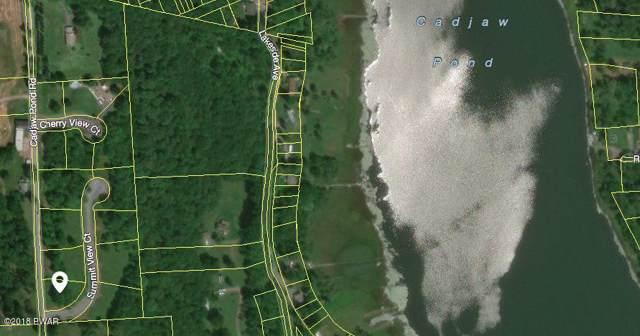 13 Summit View Ct, Honesdale, PA 18431 (MLS #18-622) :: McAteer & Will Estates | Keller Williams Real Estate