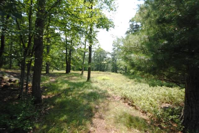 LOT 80-81 Ponderosa Pines Way, Hawley, PA 18428 (MLS #19-1793) :: McAteer & Will Estates | Keller Williams Real Estate